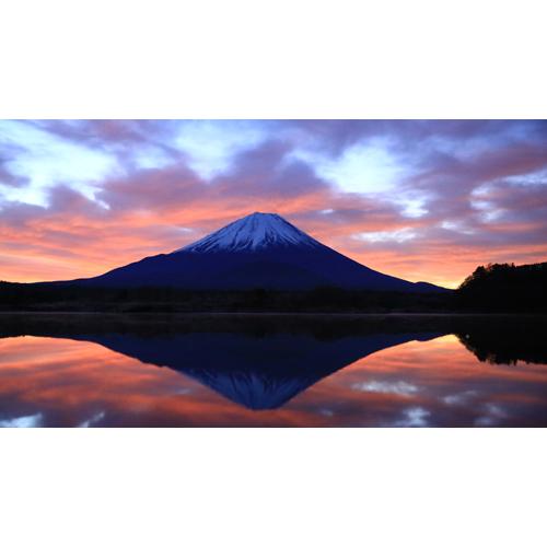 富士燃える