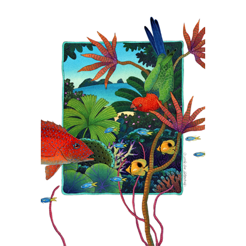 Rainforest and Reef